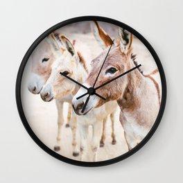 Three Donkeys in Baja, Mexico Wall Clock