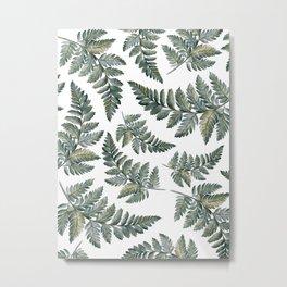 Fern Leaf Patterns  Metal Print
