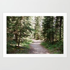 Fish Creek Art Print