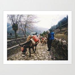 Nepal Art Print