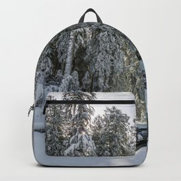Pacific Northwest Winter River Adventure Backpack