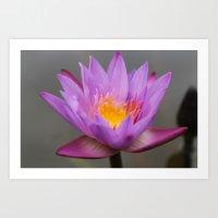 Floating Flower Art Print