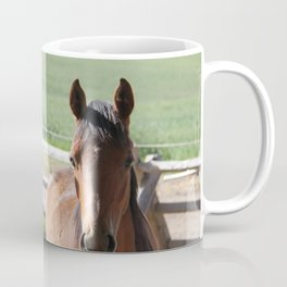 Horse Friends Photography Print Coffee Mug