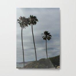 San Diego Palm Trees Metal Print