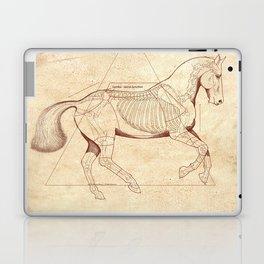 Da Vinci Horse: Canter Laptop & iPad Skin