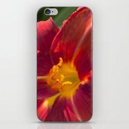 Brilliance iPhone Skin