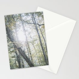 Forest (V) Stationery Cards