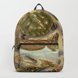 Ernst Haeckel Chelonia 1904 Poster Backpack