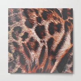 Fur pattern bengal cat, spotty pattern, big cat Metal Print