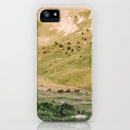 Stallions & Mares in the Valley iPhone Case