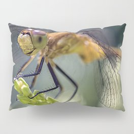 Dragonfly Closeup Pillow Sham