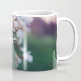 Among the Magnolias Coffee Mug
