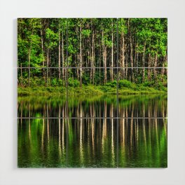 Forest reflection Wood Wall Art