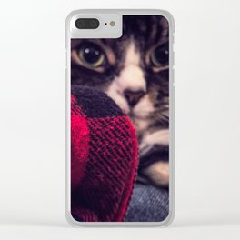 Abelard the Maine Coon Cat Clear iPhone Case