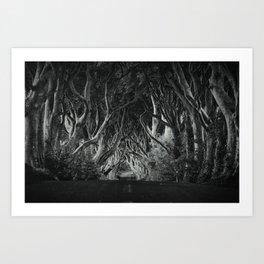The Kingsroad Art Print