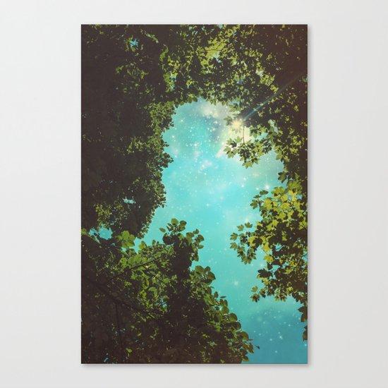 Starry Sky Canvas Print
