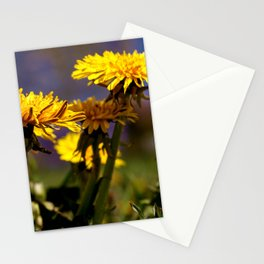Concept flora : Dandelions in a field Stationery Cards