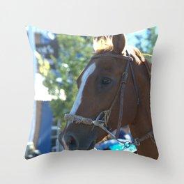 Horse of course Throw Pillow