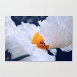 Fluttering White Poppy Canvas Print