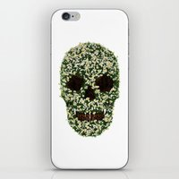 pushing daisies iPhone & iPod Skins featuring Pushing up Daisies by Luke Dwyer - Artist