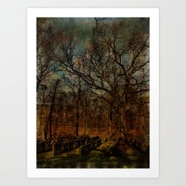 Cemetery within a Cemetery Art Print