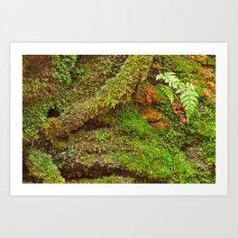 Moss Hysteria Art Print