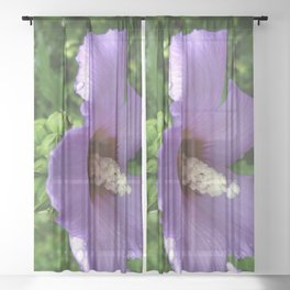 From Garden To Art The Flowering Hibiscus Sheer Curtain