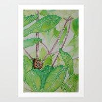 Snail in the Garden Art Print