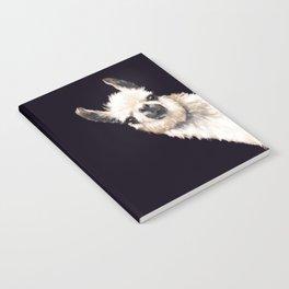 Sneaky Llama in Black Notebook