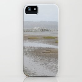 Salt Water Marsh Snow Squall iPhone Case