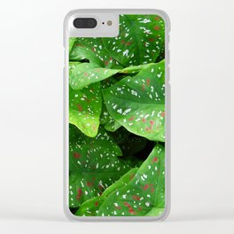 caladium Clear iPhone Case