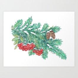 Pine Needles and Berries Art Print