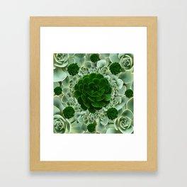 JADE & DARK GREEN SUCCULENT ROSETTES GARDEN Framed Art Print