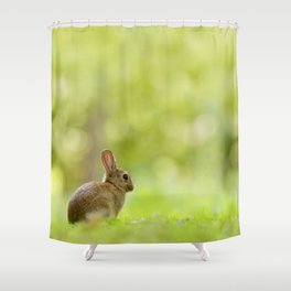 The Happy Rabbit Shower Curtain