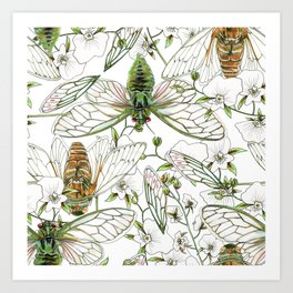 Cicadas and Orchids Art Print