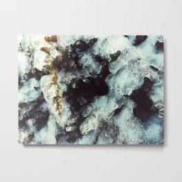 Frozen in ice Metal Print