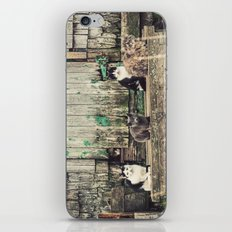 Band of Brothers iPhone & iPod Skin