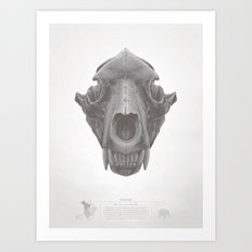 Grizzly Skull Art Print