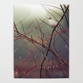 Bird and Red Branches Poster