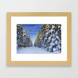 Trail through beautiful winter forest on a clear day Framed Art Print