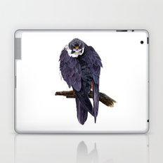 Hobby Laptop & iPad Skin