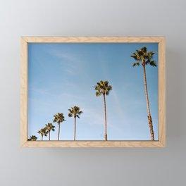 California Palms Framed Mini Art Print