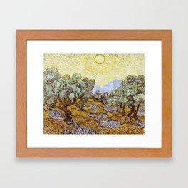 Olive Trees by Vincent van Gogh Framed Art Print