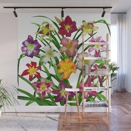 Display of daylilies II Wall Mural