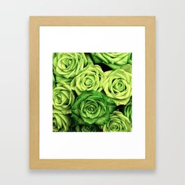 Green Roses Framed Art Print