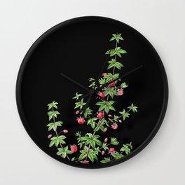 Vintage Madder Leaved Bauera Botanical Illustration on Black (Portrait) Wall Clock