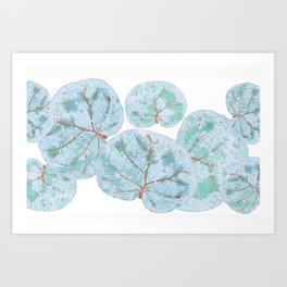 Sea Grape Tropical Leaves Art Print