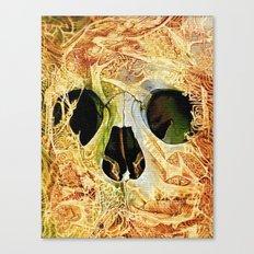 nuance skull Canvas Print