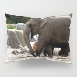 Friends at the zoo V Pillow Sham
