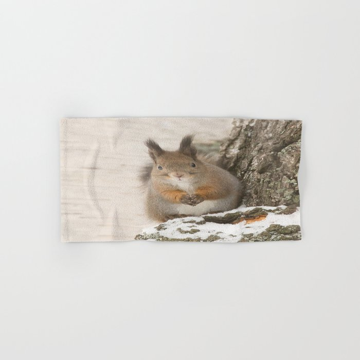 Hi there - what's up? Hand & Bath Towel